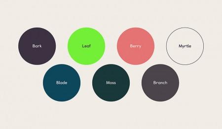 koto-gumtree-colour-1